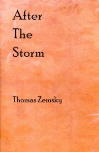 After the Storm by Thomas Zemsky (Broadstone Books, 2016)
